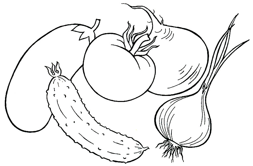 Раскраски Раскраски с изображениями различных овощей.  Раскраски для изучения овощей в детском саду или в развивающем центре. Раскраски для раннего развития детей